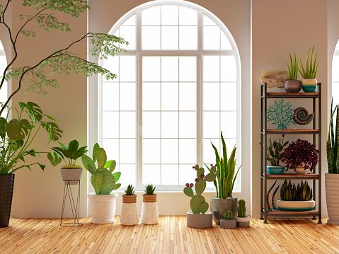 Flower Pot「Green Plants and Flowers with Window」:スマホ壁紙(12)