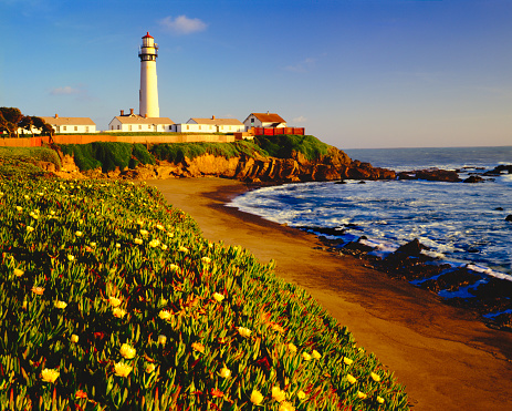 California State Route 1「Pigeon Point Lighthouse on California Coastline」:スマホ壁紙(19)