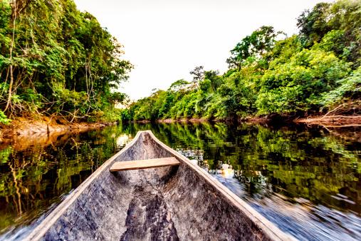 アマゾン熱帯雨林「セーリング、カヌーにインディジナス木製の州ベネズエラアマソナス州」:スマホ壁紙(2)
