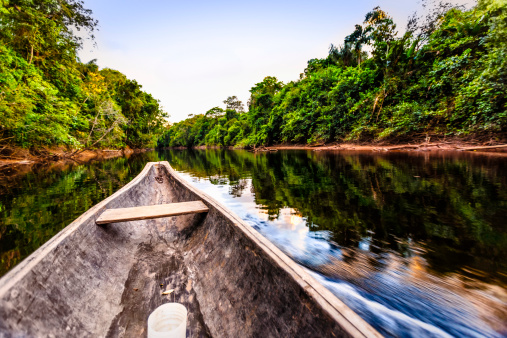 Amazon Rainforest「Sailing on Indigenous wooden canoe in the Amazon state Venezuela」:スマホ壁紙(16)
