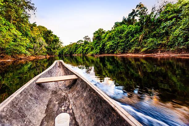 Sailing on Indigenous wooden canoe in the Amazon state Venezuela:スマホ壁紙(壁紙.com)