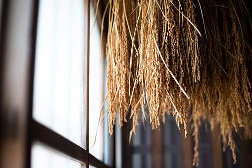 Takayama City「Japan, Takayama, Sake rice hanging indoors」:スマホ壁紙(11)