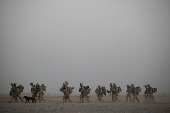 Armed Forces「U.S. Marines Continue Suppression Of Insurgents」:写真・画像(17)[壁紙.com]