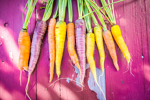 Carrot「Row of heirloom carrots on pink wood」:スマホ壁紙(12)