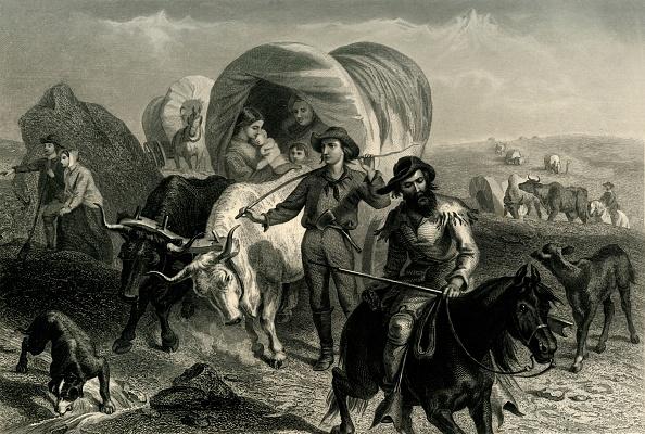 Ox Cart「Emigrants Crossing The Plains」:写真・画像(17)[壁紙.com]