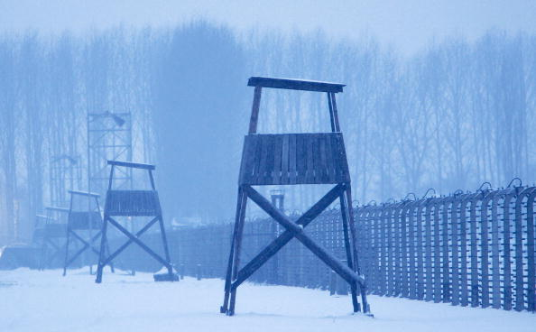 Barbed Wire「Auschwitz Prepares for 60 Years Since Concentration Camp Liberation」:写真・画像(10)[壁紙.com]