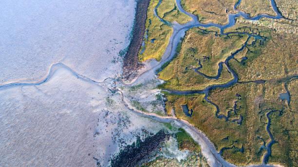 Dyke, salt marsh and coastline - aerial view:スマホ壁紙(壁紙.com)