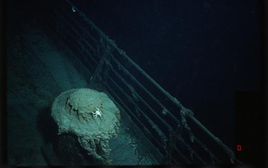 1980-1989「Crab on Bollard of the Titanic」:スマホ壁紙(5)