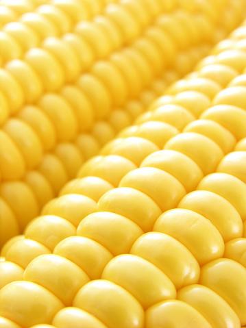 Corn「Corn on the cob」:スマホ壁紙(6)