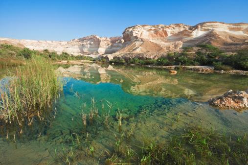 Riverbed「Water in Wadi」:スマホ壁紙(9)