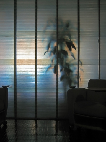 Frosted Glass「Indoor plant behind frosted glass in office」:スマホ壁紙(12)