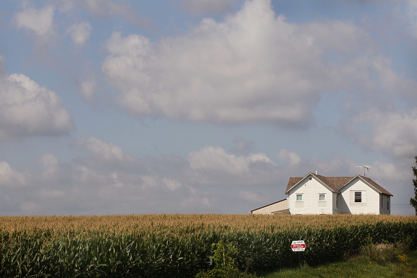 Farm「Despite Wobbly Economy, Midwestern Farmers Enjoy High Yields And Profits」:写真・画像(5)[壁紙.com]