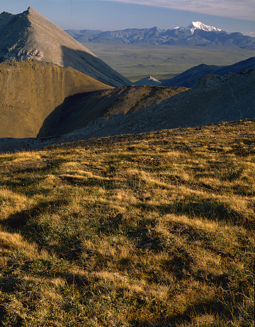 Arctic National Wildlife Refuge「Tundra Landscape」:スマホ壁紙(4)
