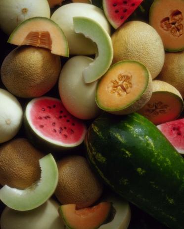 メロン「Assortment of melons」:スマホ壁紙(11)