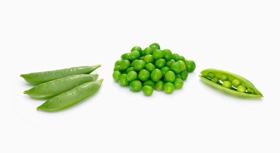 Legume Family「Assortment of green peas」:スマホ壁紙(13)