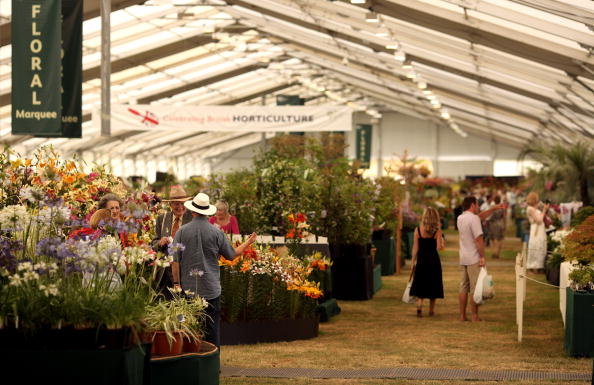Greenhouse「The Annual Hampton Court Flower Show Is In Full Bloom」:写真・画像(13)[壁紙.com]