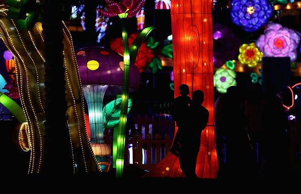 Francois Nel「Dubai Garden Glow」:写真・画像(14)[壁紙.com]