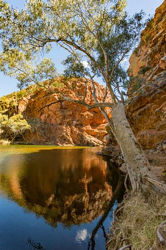 Outback「The Spectacular Ellery Creek Big Hole Waterhole in Northern Territory, Australia」:スマホ壁紙(17)