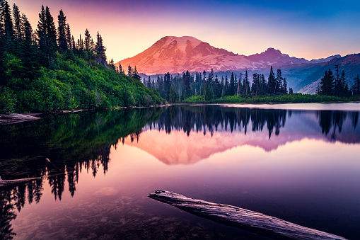 Wilderness Area「Mountain reflection in Bench Lake, Mt Rainier National Park, Washington, America, USA」:スマホ壁紙(14)