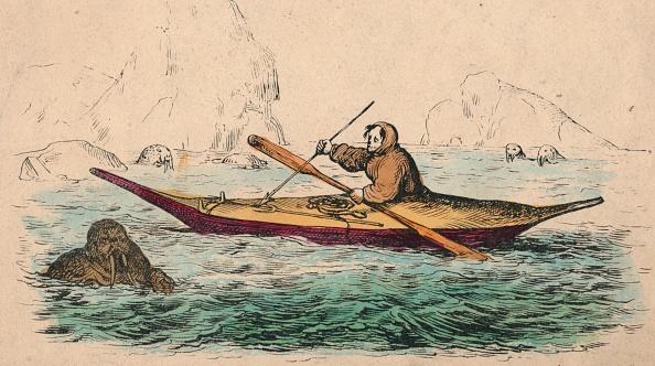 Arctic Ocean「Greenlander Creator: Unknown」:写真・画像(9)[壁紙.com]