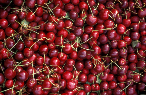Olympia - Washington State「A lot of cherries!」:スマホ壁紙(19)