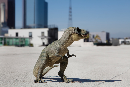 Dinosaur「tyrannosaurus rex made from rubber stand in city」:スマホ壁紙(11)