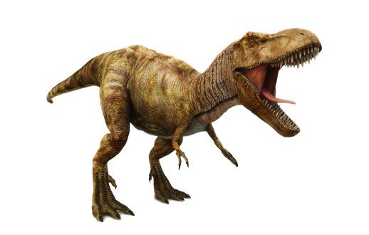恐竜「ティラノサウルスレックス」:スマホ壁紙(2)