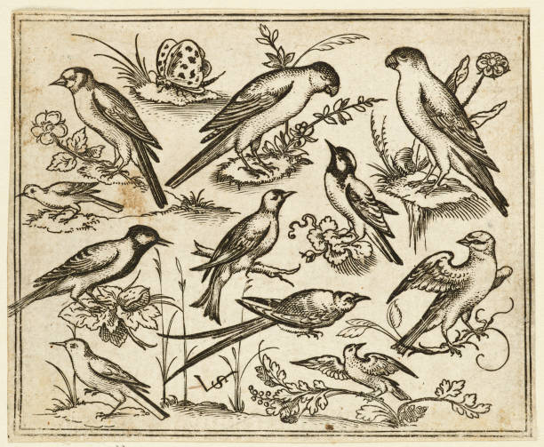 Eleven Birds Sitting On Patches Of Flowering Foliage And Small Branches:ニュース(壁紙.com)
