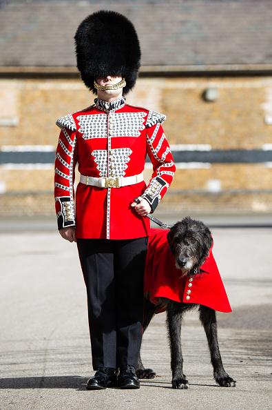 歩兵「The Duke And Duchess Of Cambridge Attend The Irish Guards St Patrick's Day Parade」:写真・画像(19)[壁紙.com]