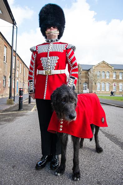 歩兵「The Duke And Duchess Of Cambridge Attend The Irish Guards St Patrick's Day Parade」:写真・画像(17)[壁紙.com]
