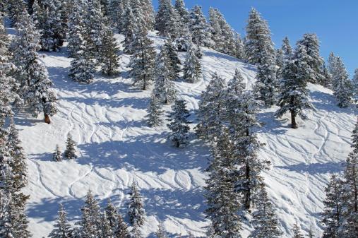 Ski Resort「USA, Idaho, Sun Valley, ski tracks running down slope」:スマホ壁紙(7)