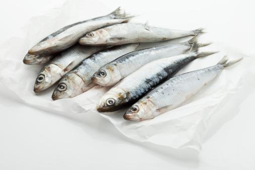 Sardine「Sardines on wax paper」:スマホ壁紙(8)