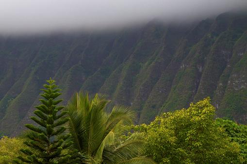 オアフ島「Ko'olau Mountain Range」:スマホ壁紙(8)