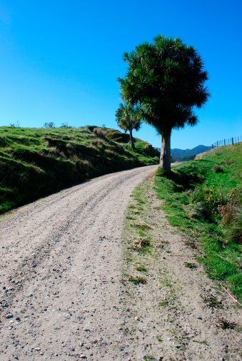New Zealand Culture「Road to Nowhere, New Zealand」:スマホ壁紙(5)