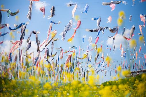 Festival of Japan「koi shaped flag」:スマホ壁紙(12)