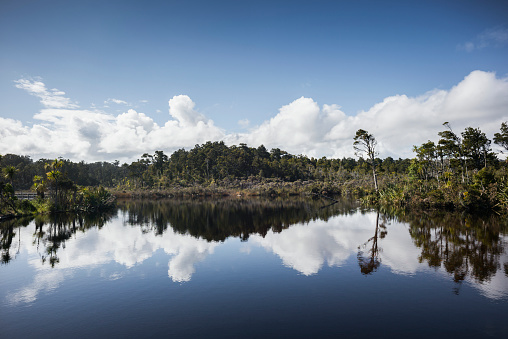 Westland - South Island New Zealand「Lagoon as westcoast New Zealand」:スマホ壁紙(18)