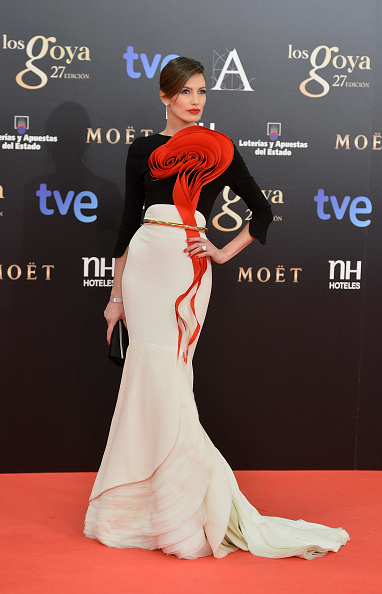 Goya Awards「Goya Cinema Awards 2013 - Red Carpet」:写真・画像(13)[壁紙.com]