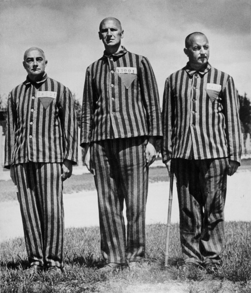 Dachau「Oberst Franz Zelburg, The Styrian Govenor Karl Maria Stepan And Alfons Gornach.  Prisoners Of The First Transport To The Concentration Camp In Dachau. 1938. Photograph.」:写真・画像(13)[壁紙.com]