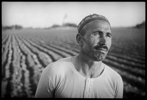 Skull Cap「A Farmer」:写真・画像(10)[壁紙.com]