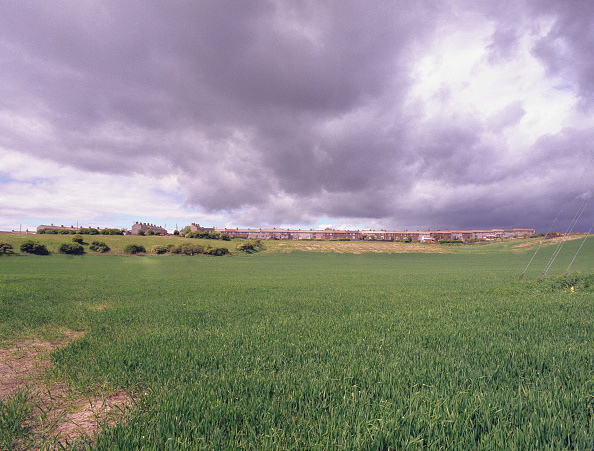Grass Family「gated house development surrounded by fields, Yorkshire」:写真・画像(17)[壁紙.com]