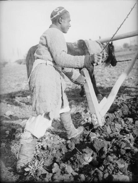 Skull Cap「Collective Farmer Plowing」:写真・画像(6)[壁紙.com]