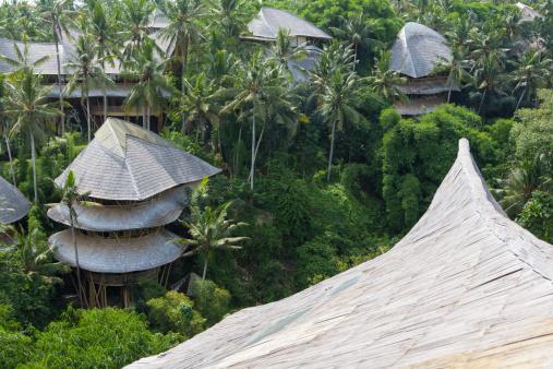 Eco Tourism「Treehouse rooftops of tropical hotel, Ubud, Bali, Indonesia」:スマホ壁紙(2)