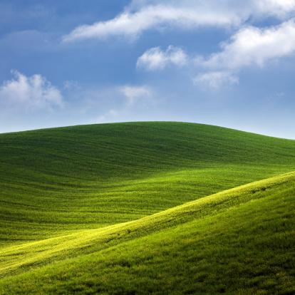 Rolling Landscape「Green hills of Tuscany」:スマホ壁紙(2)