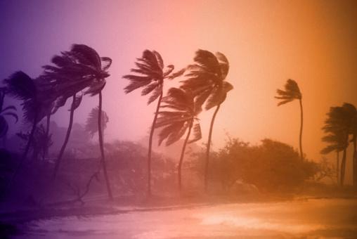 Furious「Hurricane Winds」:スマホ壁紙(5)