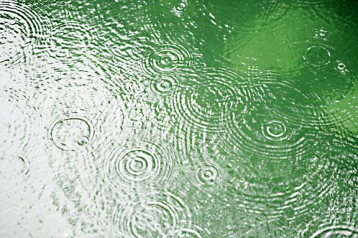 雨「Rain hitting water surface, Kagoshima Prefecture, Kyushu, Japan」:スマホ壁紙(13)