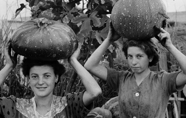 Only Women「Pumpkin Pickers」:写真・画像(8)[壁紙.com]
