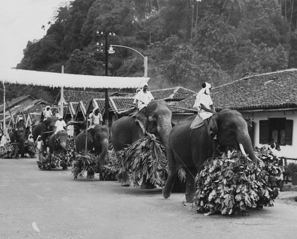 Sri Lanka「Royal Tour Of The Commonwealth 1954」:写真・画像(16)[壁紙.com]