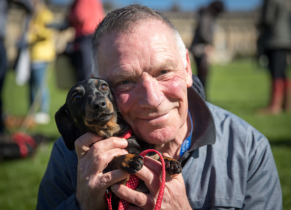 Keypad「The Sausage Dog Club Meets For Its Annual Walk In Bath」:写真・画像(9)[壁紙.com]