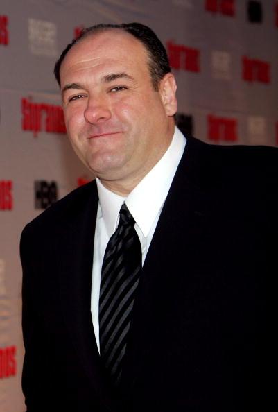 """James Gandolfini「HBO Premiere Of """"The Sopranos"""" - Arrivals」:写真・画像(8)[壁紙.com]"""