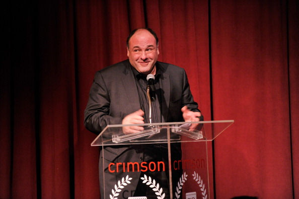 James Gandolfini「2012 New York Film Critics Circle Awards - Inside」:写真・画像(8)[壁紙.com]